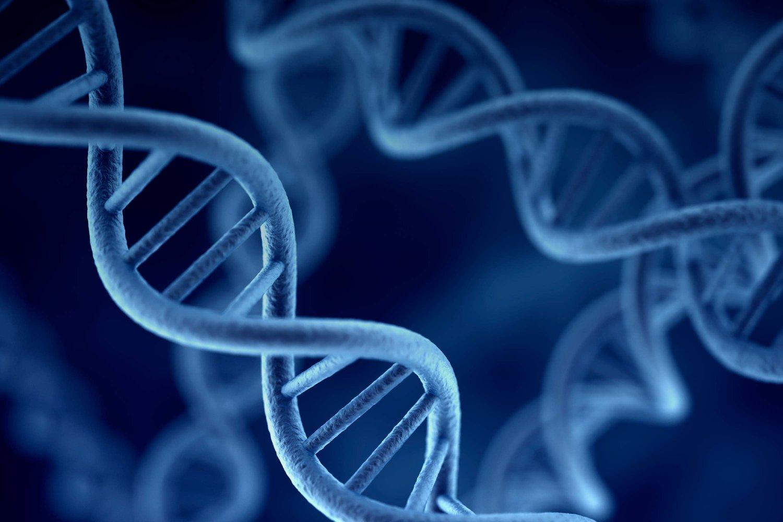 Генетика — википедия с видео // wiki 2