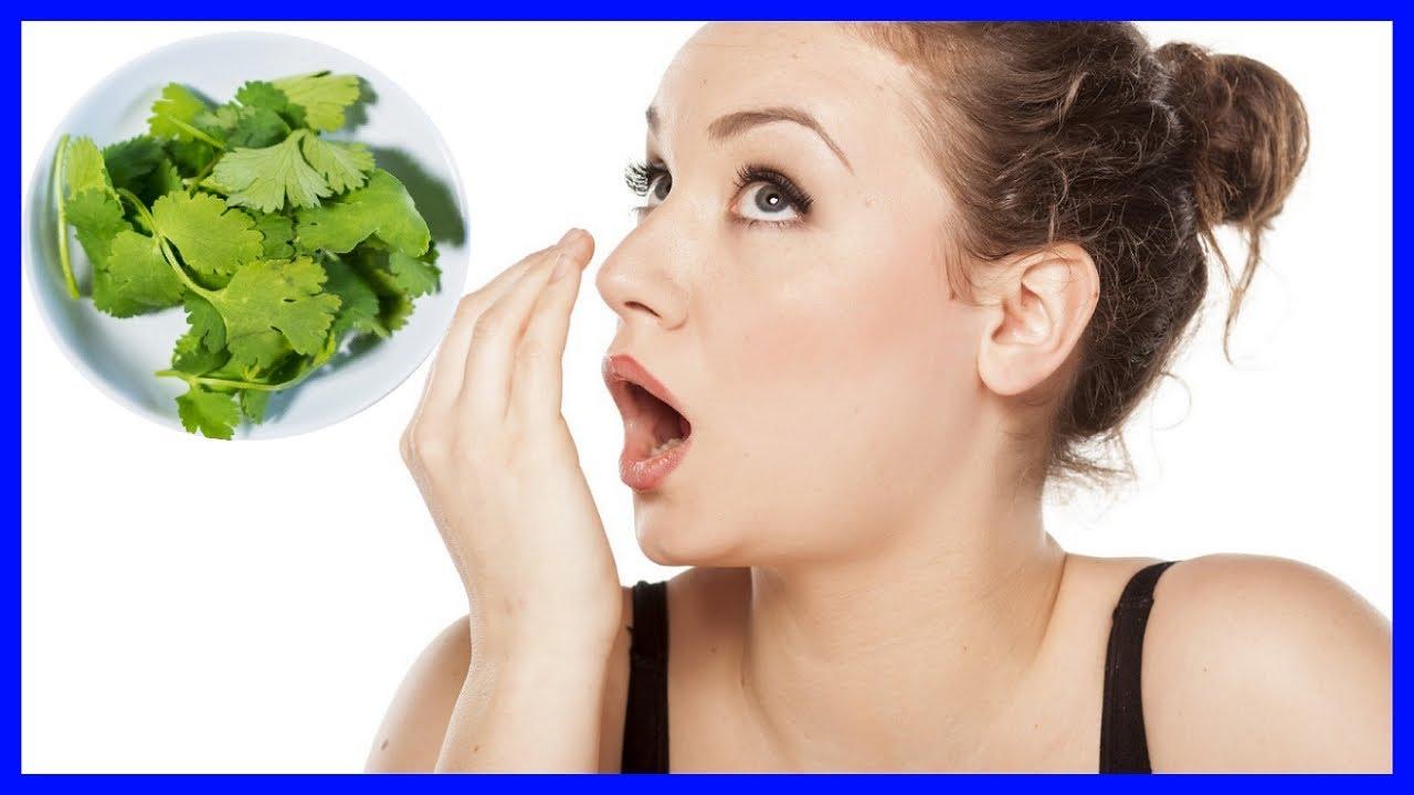 Эффективные народные средства для устранения галитоза (халитоза) - плохого запаха изо рта в домашних условиях. диагностика заболевания и причины его возникновения.