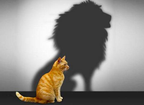 Уверенность в себе: что это такое и как стать увереннее?