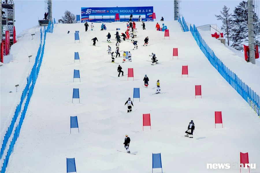Как появился и что собой представляет зимний вид спорта могул? фото дня. что такое могул