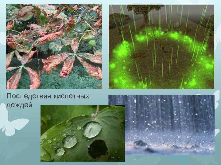 Кислотные дожди: что это, причины, последствия, методы борьбы