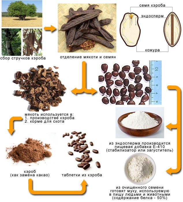 Кэроб польза и вред: состав, свойства, применение, как готовить, вкус