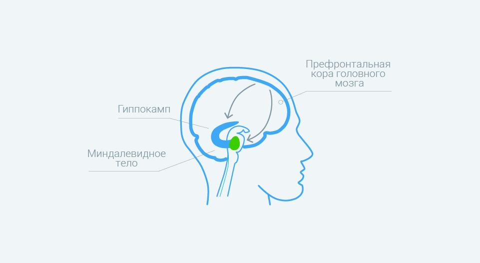 Предменструальный синдром - причины и симптомы
