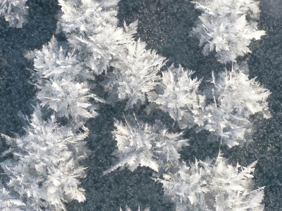 Не только сухой лед. 10 простых вещей, которые могут быть опасны