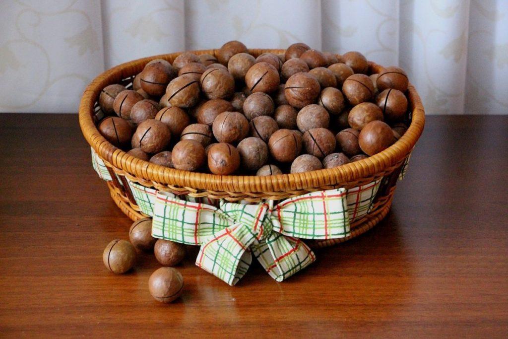 Полезные свойства макадамии и противопоказания для употребления ореха