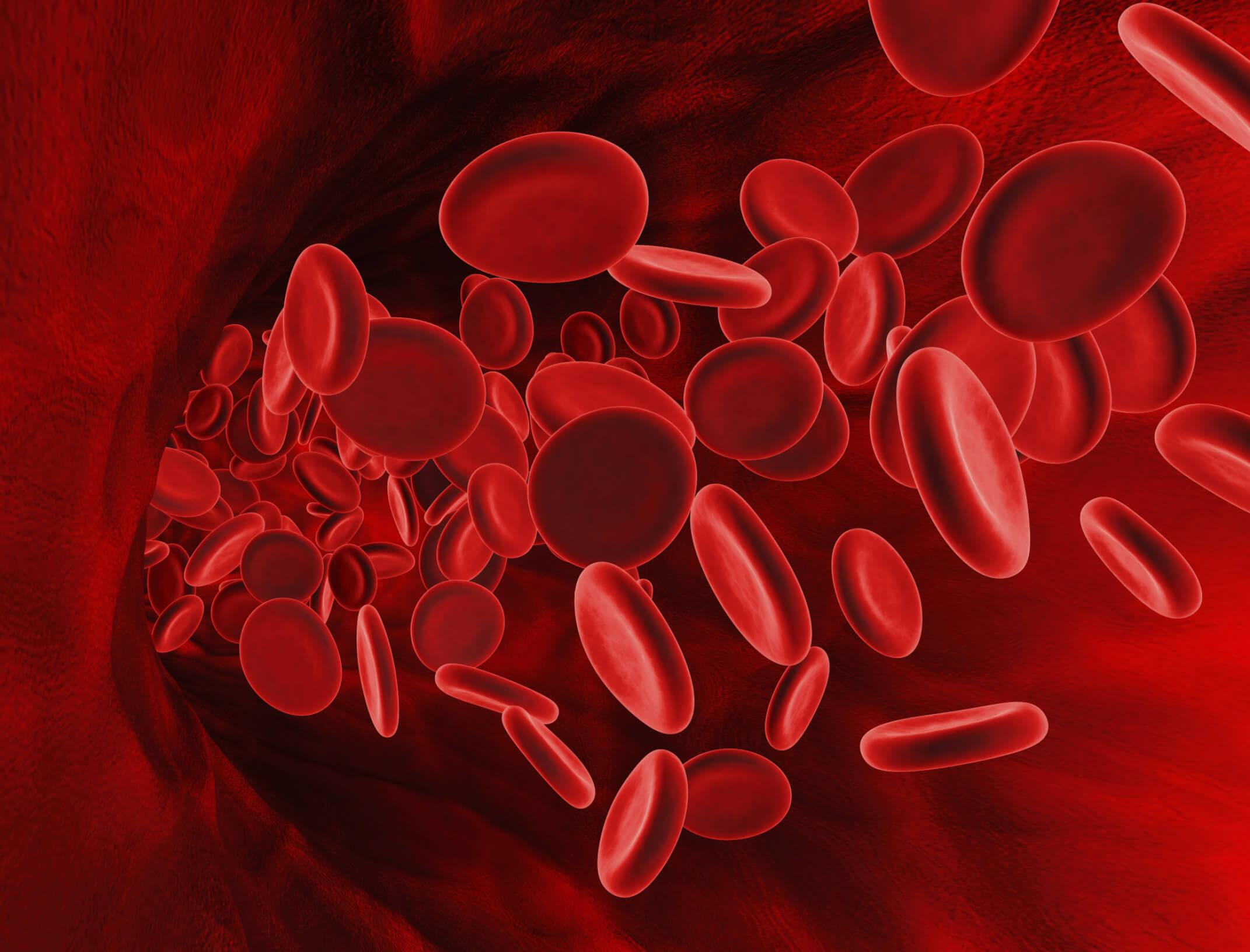 Какие функции выполняют эритроциты, сколько живут и где разрушаются