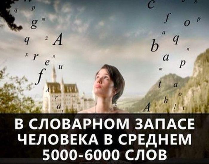 Производная (математика)