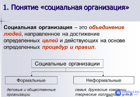 Типология (лингвистика)