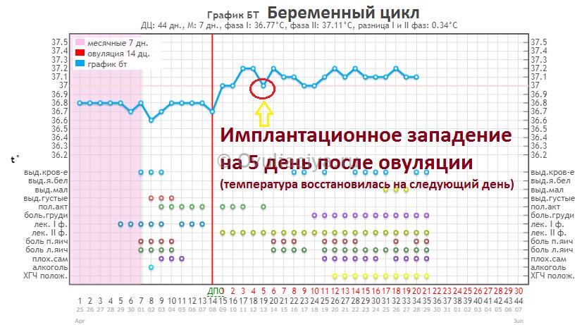Факторы, влияющие на базальную температуру - статьи |             эко-блог
