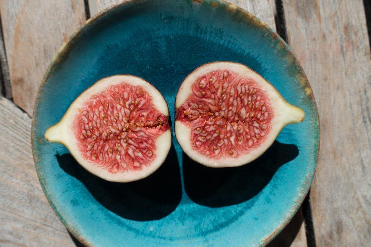 Фиговое дерево и инжир: как выглядит и растет, к фруктам или ягодам относится, каковы особенности плодоношения фигового дерева