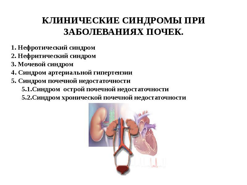 Нефротический синдром. причины, симптомы, диагностика и лечение патологии :: polismed.com