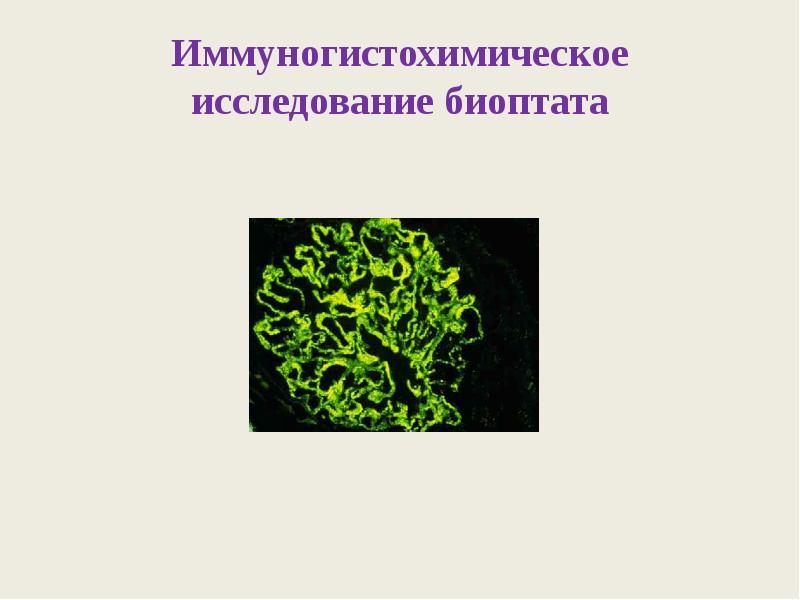 Игх исследование — помощник в расшифровке биологии рака молочной железы