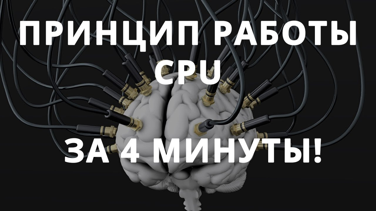 Как устроен процессор? разбираемся вместе