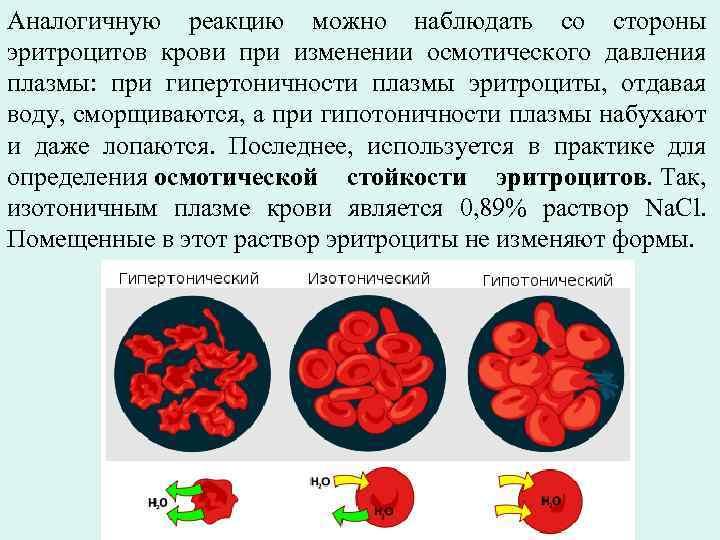 Гемолиз: что это такое, причины, признаки, лечение | hk-krasnodar.ru