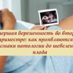 Замершая беременность: симптомы, причины, признаки, лечение   wmj.ru