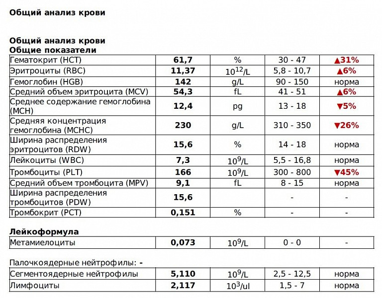 Wbc в общем анализе крови: расшифровка, норма у женщин и мужчин