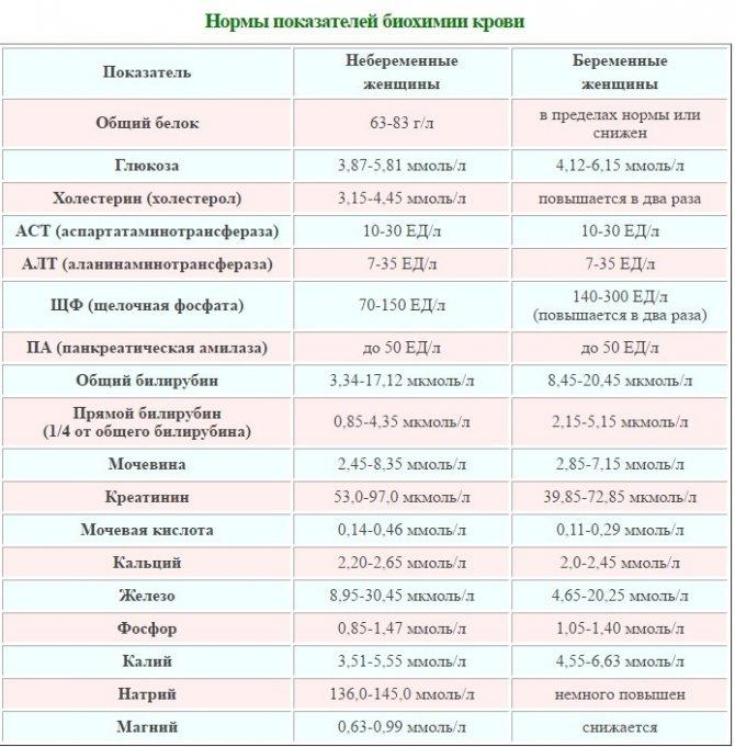Причины гипопротеинемии — низкого белка в крови