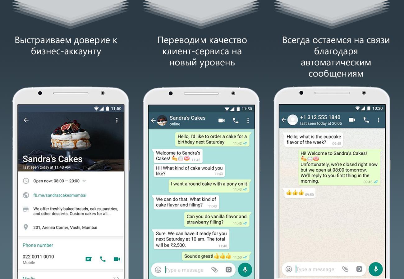 Whatsapp для бизнеса: как подключить и для чего это нужно