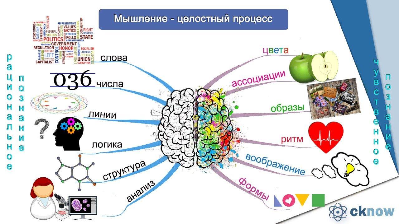 Виды познания: житейское, научное, философское, художественное, социальное