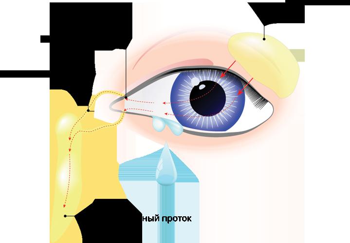 Почему мы плачем: все, что нужно знать о слезах | food and health