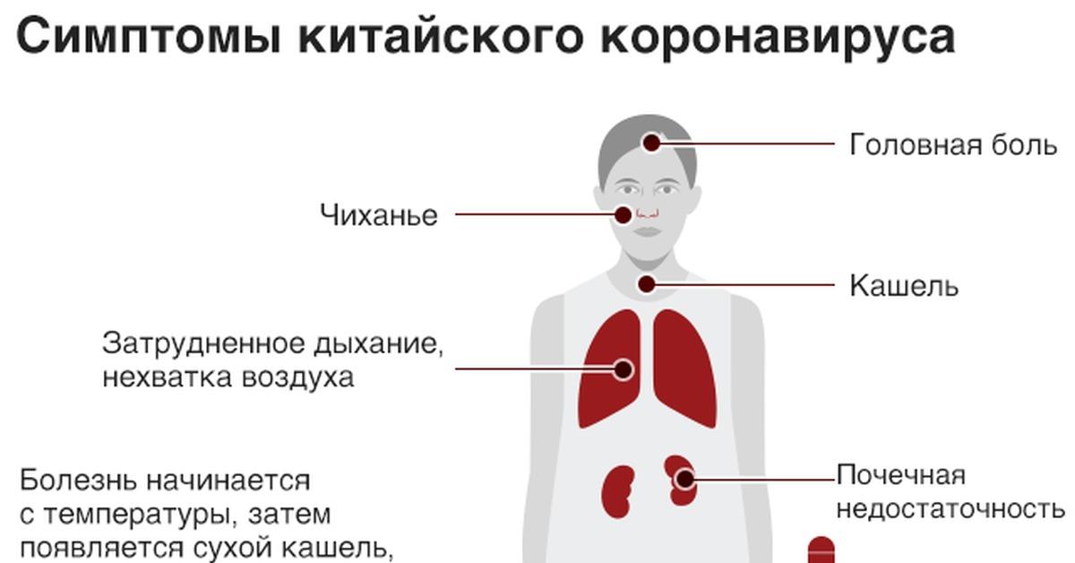 Отоларинголог: что лечит, где принимает, особенности диагностики | food and health