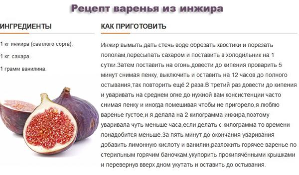 Как по другому называется инжир — ягоды грибы