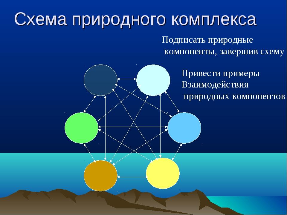 Природные комплексы: размеры, компоненты, примеры и характеристика — природа мира