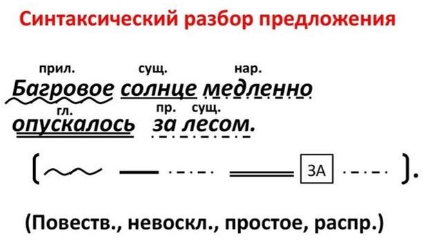 Синтаксический разбор сложного предложения: примеры