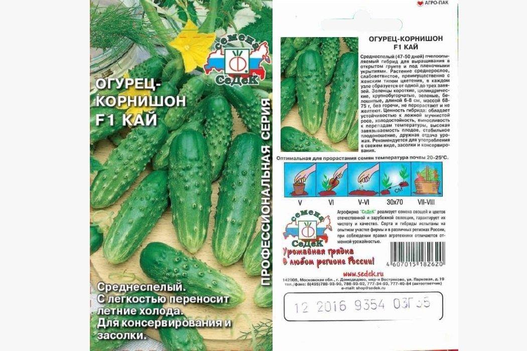 Огурцы корнишоны: сорта с описанием и фото, характеристика, особенности – сад и огород своими руками