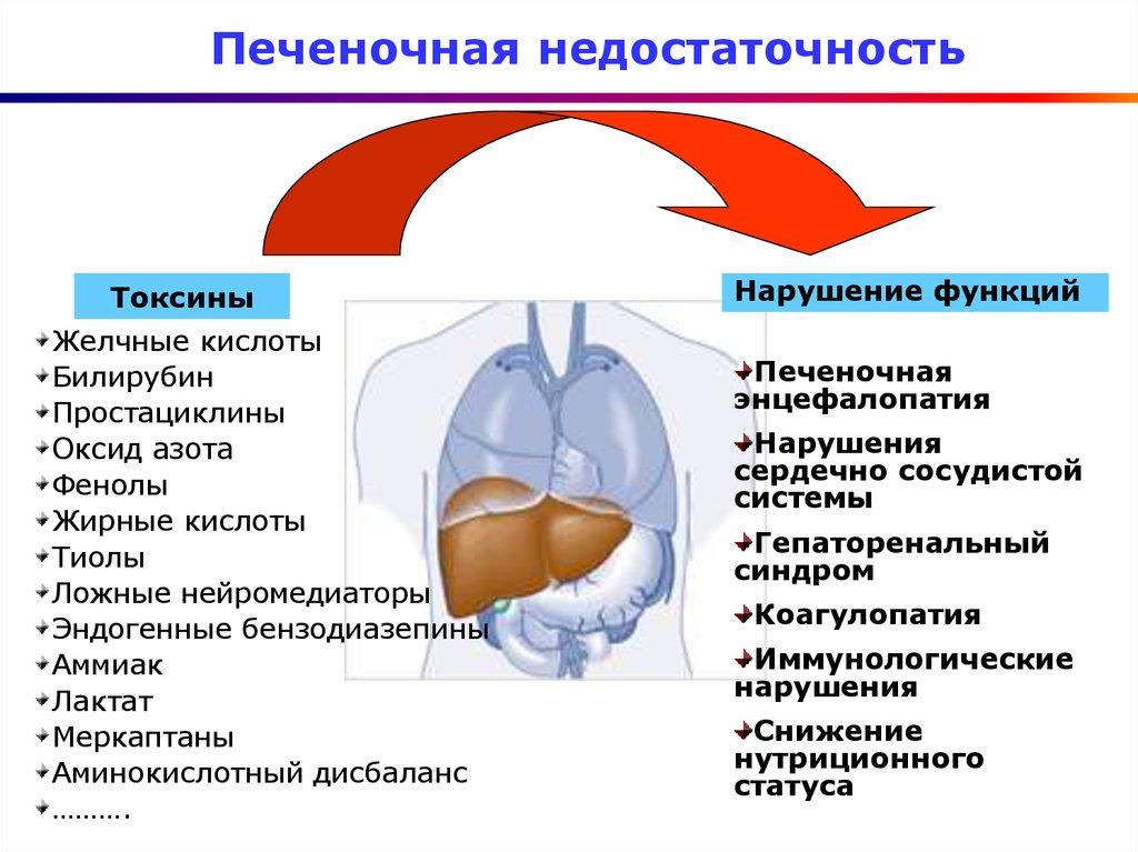 Печеночная недостаточность: симптомы, признаки, лечение