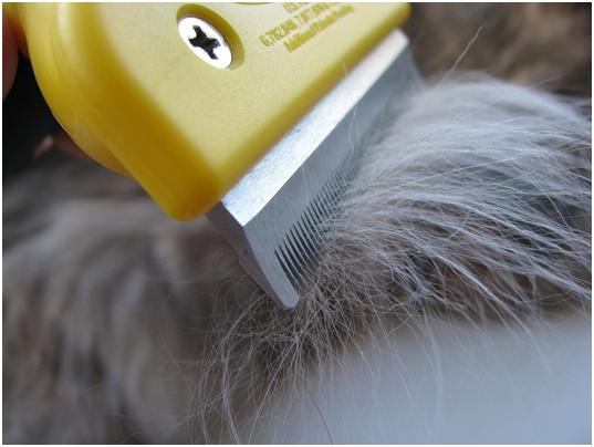 Фурминатор для собак: инструкция по использованию   отзывы, цена