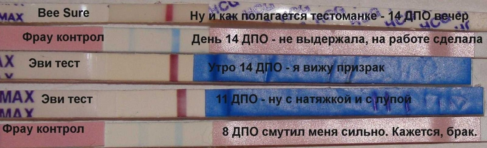 Формы и виды дополнительного образования. дополнительное профессиональное образование :: businessman.ru