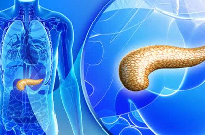 Эхогенность печени повышена: признаки, причины, лечение