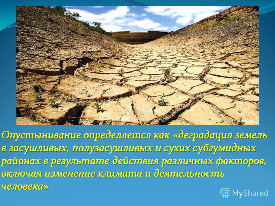 Что такое опустынивание? причины опустынивания. где происходит опустынивание?