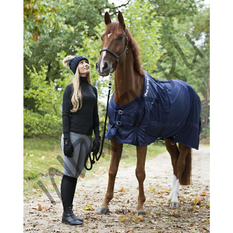 Попона для лошади: для чего необходима, как сшить своими руками