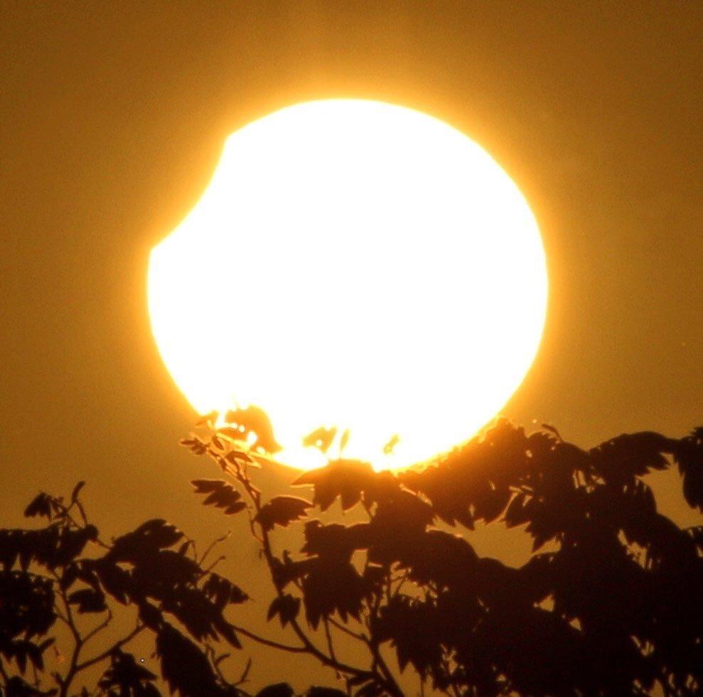 Солнечное затмение: описание, интересные факты (фото)