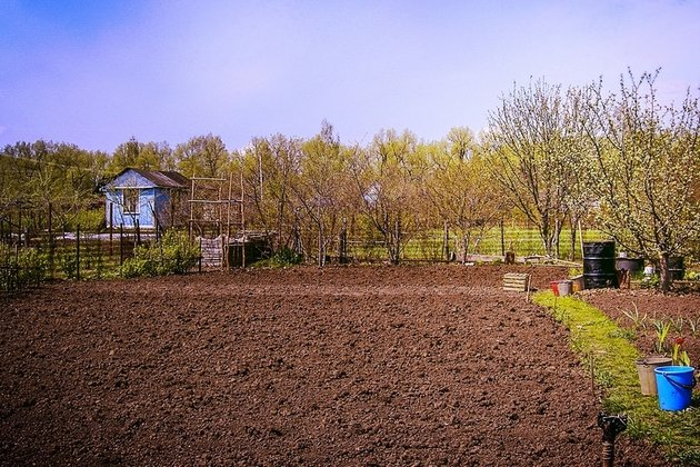 Земли сельхозназначения снт и днп: расшифровка, назначение | domosite.ru