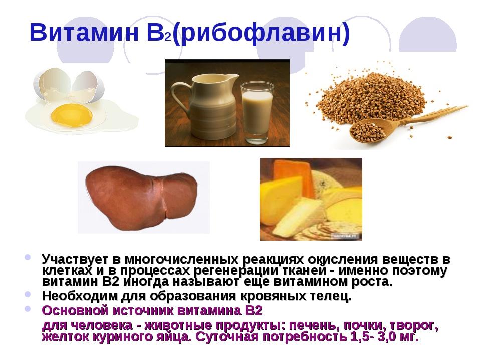 Витамин в2 (рибофлавин). витамины для здорового образа жизни, витаминно-минеральные комплексы для вашего здоровья и долголетия.
