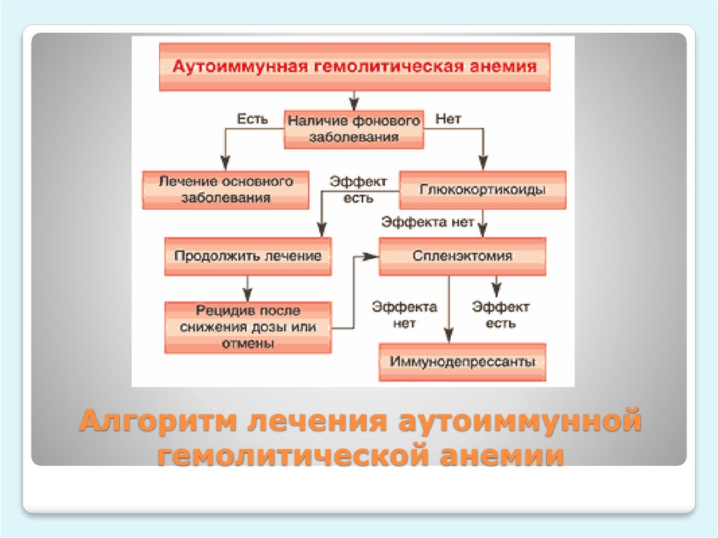 Что такое гемолитическая анемия? описание болезни простыми словами