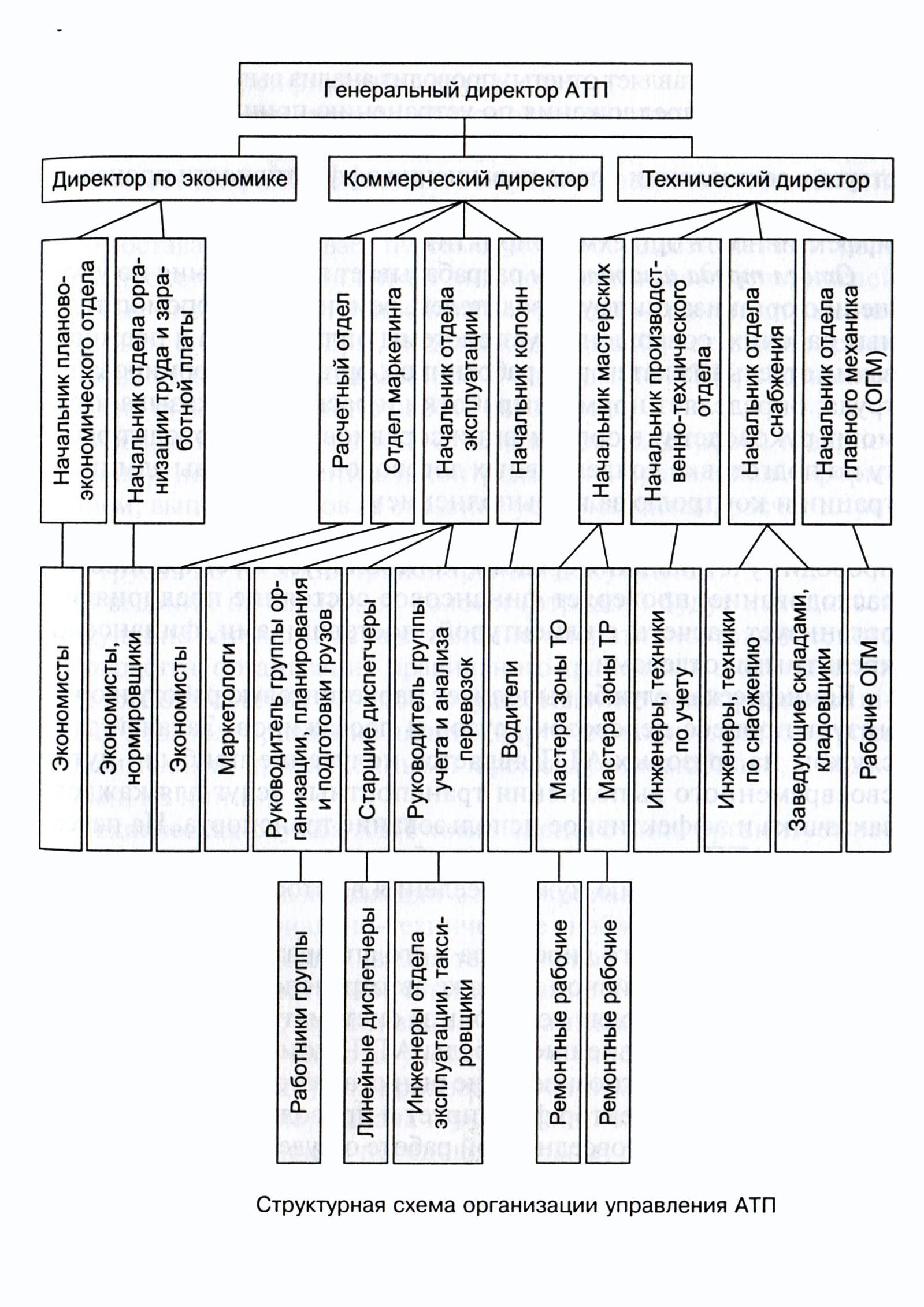 Структура организации – схема, пример, описание