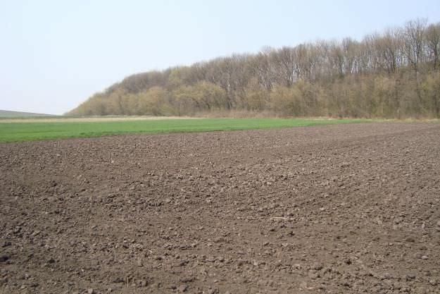 Земельный пай: что это такое? кому положен пай земли, виды сделок