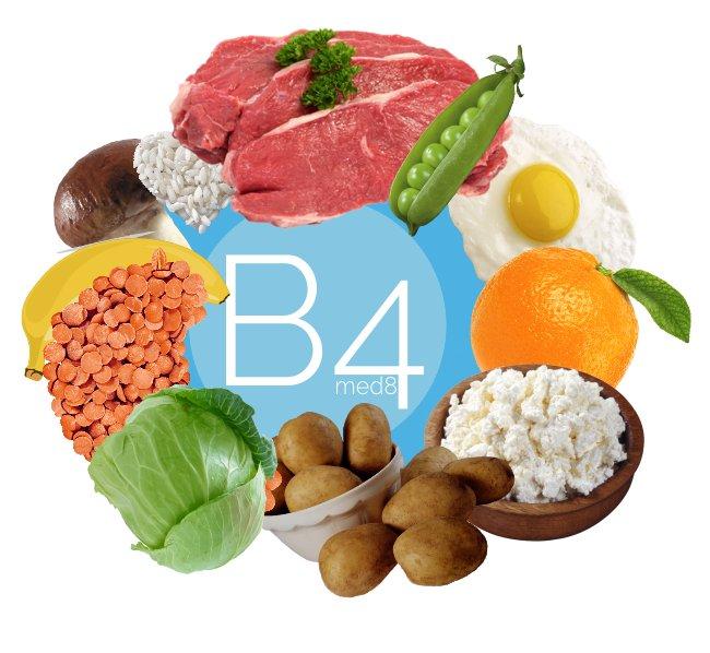 Витамин b4 (холин): описание, характеристика. польза и вред для организма
