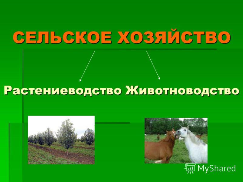 Структура растениеводства — cельхозпортал