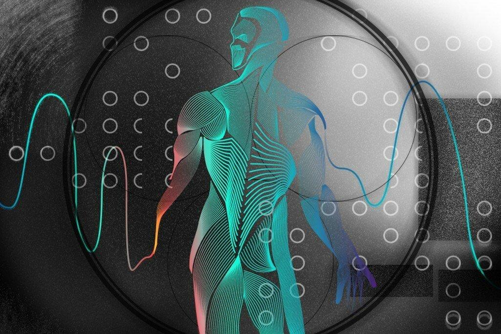 Что такое биохакинг и зачем он нужен | m-health congress