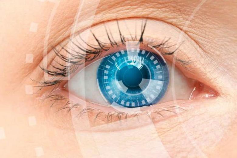 Хрусталик глаза, его функции и особенности. простые способы сохранить зрение.
