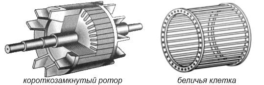 Ротор электродвигателя – особенности конструкции и принцип работы устройства. инструкция по ремонту и восстановлению
