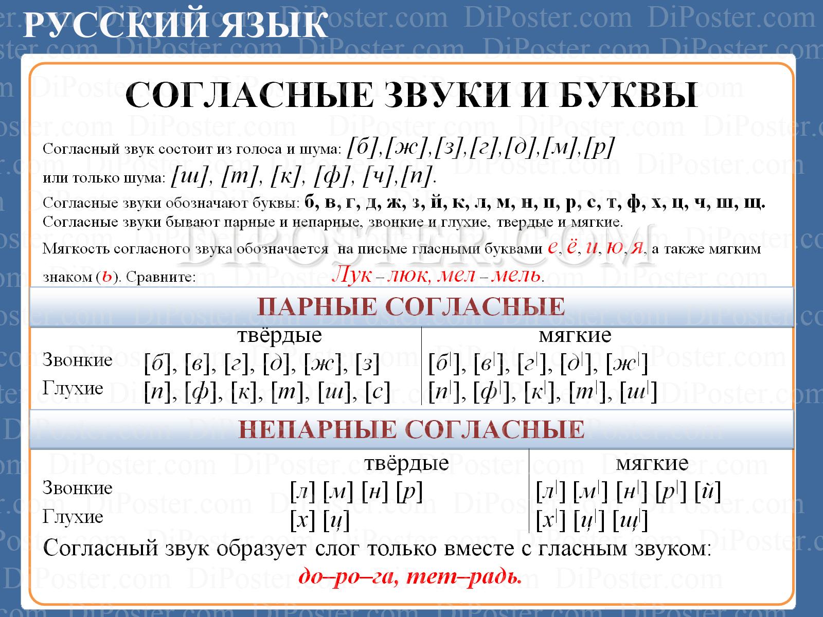 Фонетика русского языка