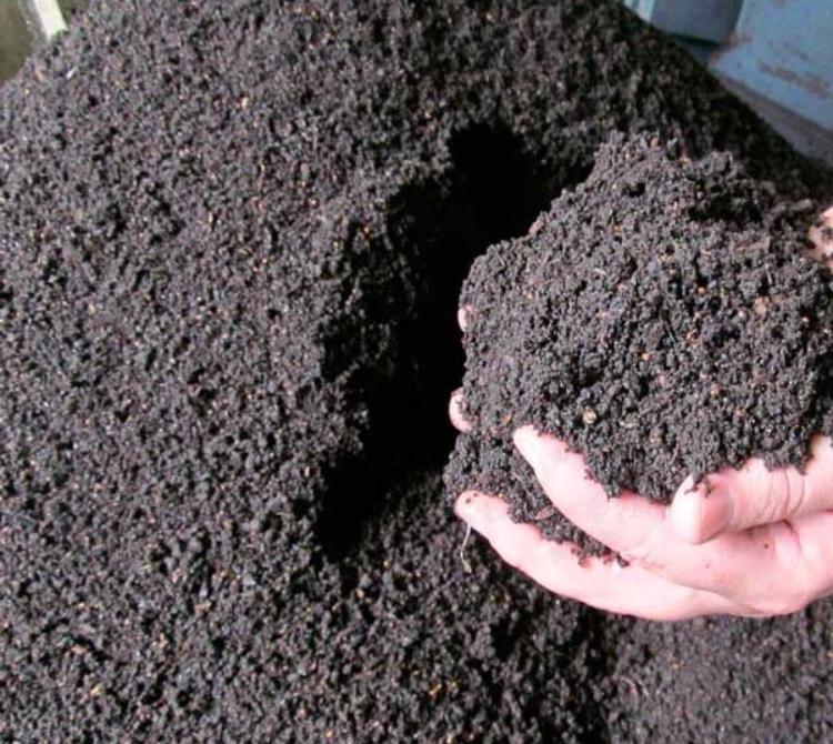 Как получить собственный биогумус для растений?