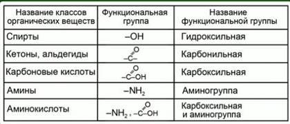Занятие 8 основные понятия биоорганической химии. изомерия органических соединений
