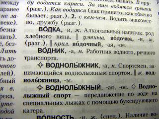 Словарная статья - википедия